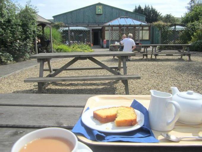 The Halt Cafe and Gardens